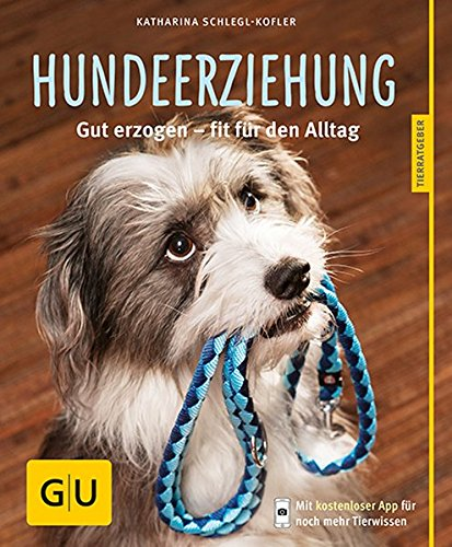 Hundeerziehung: Gut erzogen – fit für den Alltag